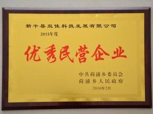 2015年度优秀民营企业